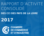 Parution de la 1ère édition régionale du rapport d'activité !
